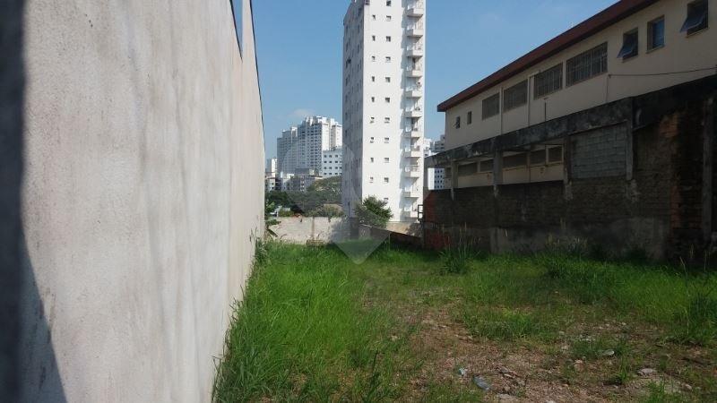 Padrão em Vila Leopoldina, São Paulo - SP