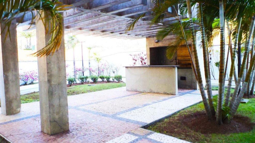 Apartamento de 3 dormitórios à venda em Vila Suzana, São Paulo - SP