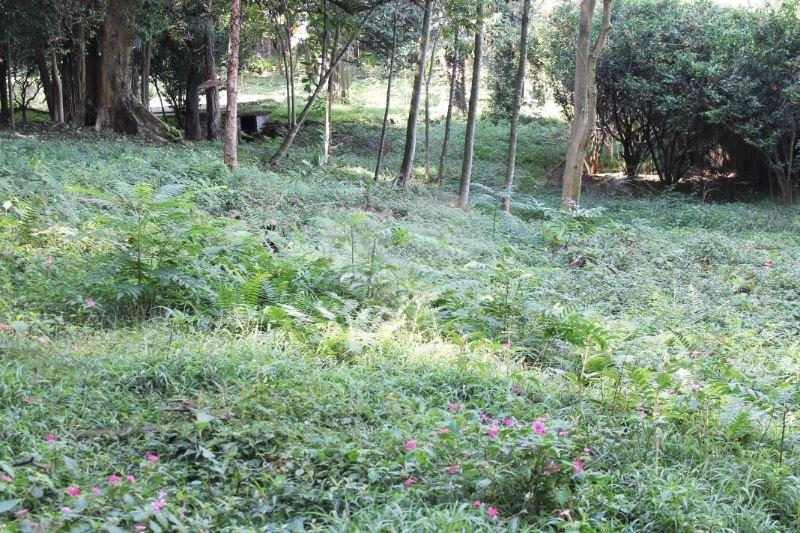 Terreno em Chácara Flora, São Paulo - SP