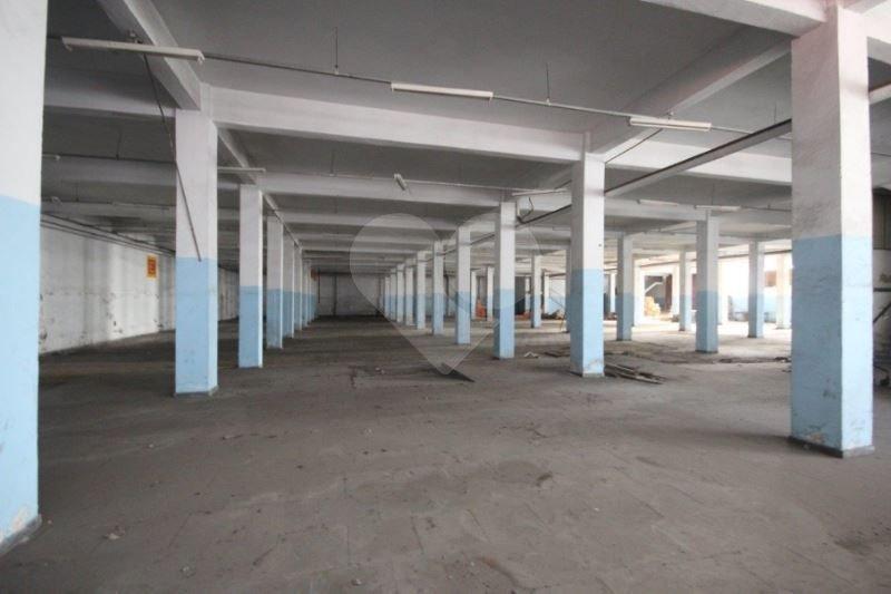 Galpão de 10 dormitórios à venda em Vila Ribeiro De Barros, São Paulo - SP
