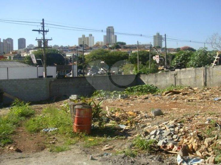 Padrão em Saúde, São Paulo - SP