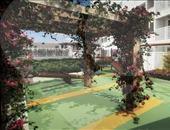 Jardim Regina Alice